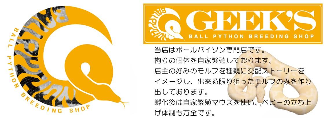 ギークス ボールパイソン❘マウス❘ラット専門店